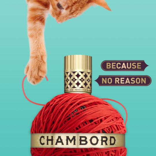 Chambord Social 08
